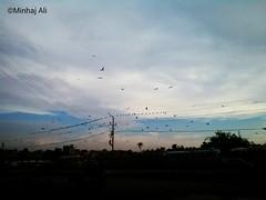 Beautiful sky in Karachi, Pakistan. #karachi #pakistan #sky #clouds #road #pole #tower #wires #electricity #electrictower #beautiful #amazing #photography #8mp #mobile #camera #birds #crow #crows #speedy #rainy #white #colorful #color #colors (minhaj_ali_rizvi) Tags: clouds rainy colorful wires colors karachi camera beautiful white crow road crows birds photography amazing pakistan tower sky 8mp pole color electricity speedy electrictower mobile