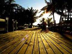 Early light . . . (KkleinRN) Tags: morning light red sun sunlight sunrise dawn morninglight palmtrees flare boardwalk roatan sunbeams sunflare