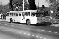 Bee line Bus (railfan3) Tags: old bus classic abandoned buses 1 1982 busway transport australian australia busstop bee transportation transit adelaide cbd former sa typical past southaustralia metropolitan services sta leyland victoriasquare beeline terminus mtt bussen oldbuses worldmaster adelaidemetro 99b metroadelaide