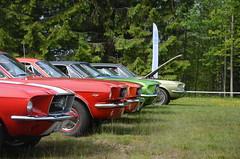 nnaboda 2015 (saabrobz) Tags: classic ford car many few mustang 2015 nnaboda