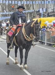 Gaucho (Adri T fotografas) Tags: bicentenario gaucho desfiledelbicentenarioenavenidademayo desfilebicentenarioenavenidademayo gauchos caballos bicentenarioindependenciaargentinabacelebra independencia argentina bacelebra