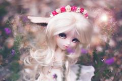 The white deer girl. (Rainbow Magical Orchestra ) Tags: girl doll pretty makeup full deer fairy planning legends groove pullip jolie custom jun supernatural fes lgendes faune poupes mignonne 0vie