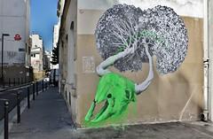 Ludo_7273 passage Saint Sbastien Paris 11 (meuh1246) Tags: streetart paris ludo passagesaintsbastien paris11 animaux crne fleur