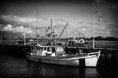IMG_7234-Edit-2.jpg (orbrazy by Pete) Tags: sea seascape beach boat coastal phillipisland sanremo