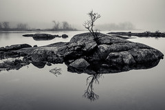 reprise (Port View) Tags: trees mist lake canada reflection tree water fog rocks novascotia foggy calm 2016 cans2s gaspereaulake fujixe2