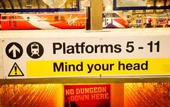 Where's Your Head At? (sjpowermac) Tags: dungeon railway station head mindyourhead 91101 york flyingscotsman subway advert eastcoast bricks platform caution