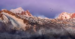 Valle d'Aspe (cedricmessemanne.com) Tags: pyrenees aspe bedous moutains france sunrise landscape vallee nature snow fog neige montagnes