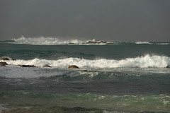 Coogee Surf (runningboffin1) Tags: australia newsouthwales coogee water surf seascape