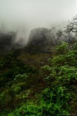 DSC_000 (68) (Praveen Ramavath) Tags: matsyapurana agnipurana skandapurana harishchandragad kalachuridynasty 6thcenturyad khireshwar harishchandreshwar temple kedareshwar shaiva shakta naath shiva siva cave pillars four konkankada konkan cliff ganapathi india maharastra hindu culture