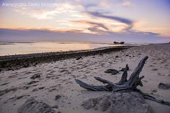 _AUS2535LRF (Alessandro Della Maggiora) Tags: alessandro della maggiora alessandro maggiora alexdm tramonto sunset australia heron island isola mare nikon d800 2470 landscape paesaggio sea