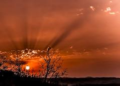 Raggi rossi. (Ale_Car) Tags: marche paesaggi delle paesaggidellemarche italia ancona scapezzano senigallia nikon d3100 35mmf18 red raggi sunset rosso sun sole summer estate landscape tramonto paesaggio campagna colline mare
