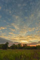 After Storm Sunset 2 (thefisch1) Tags: kansas sunset clouds various types cirrus alto cumulus praire pasture blue stem grass tree horizon oogle calendar interesting color colorful nikon nikkor