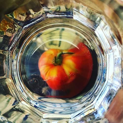 Un vaso de tomate
