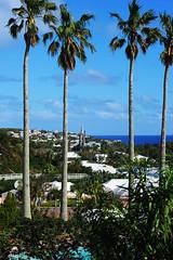 aGilHDSC_4316 (ShootsNikon) Tags: bermuda ocean atlantic subtropical beaches nature colorful island paradise