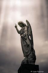 Guardian Angel (lesapalmer944) Tags: cemetery maple huntsville hill angels alabana