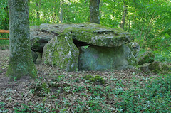 Bagneux (Indre) (sybarite48) Tags: france indre  neolithic megalith dolmen neoltico    mgalithe megalito bagneux nolithique dlmen neolitico  neolithicum   megalit  megaliet neolitik  neolithisch   meglito       neolityczny