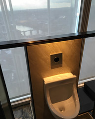 I Swear They Can See Me Pee From Waterloo Bridge (Numinosity (Gary J Wood)) Tags: uk england london borough southwark shangrilahotel theshard tinglounge