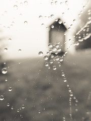 Web Droplets Messages (Catskills Photography) Tags: blackandwhite abstract macro nature water fog droplets bokeh web spiderweb hbw canong15