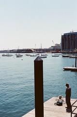 Man at Boston Waterfront (Rachael.Robinson) Tags: boston urban waterfront water boats boat sail sailboats