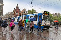 Leidsestraat - Amsterdam (Netherlands) (Meteorry) Tags: europe nederland netherlands holland paysbas noordholland amsterdam centrum centre center keizersgracht leidsestraat rain pluie summer t people umbrellas parapluis tram streetcar tramway public transport publique transportencommun transit gvb gvb0907 bn bombardier bidirectional 11g june 2016 meteorry