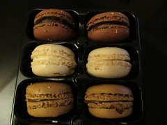 11th, Summer macaroons IMG_3938 (tomylees) Tags: thursday 11th august 2016 essex macaroons coconut dark chocolate dulcedeleche