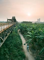 Long Bin (Nam Vu Ha) Tags: noritsu h ni march 2016 pentax645n smc pentaxa 645 35mm f35 ektar 100 film analog hs 1800
