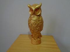 262-366-2016_G9I_01_Owl_Collection_134 (maiaadeni) Tags: 2016yip strigo owl coruja