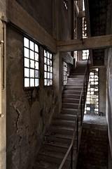 Stairway to heaven (agruebl) Tags: abandoned decay ruine abriss verlassen stairwaytoheaven stiegenhaus stiegen abrissobjekt