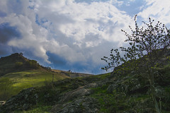 Caucasus1-10.05.2015_77 (Lion_dea) Tags: trip travel blue vacation sky mountain mountains flower nature water beauty spring nikon russia may waterfalls caucasus 365 traveling everyday tamron blooming 2875mm 365days kislovodsk pyatygorsk nikon7100