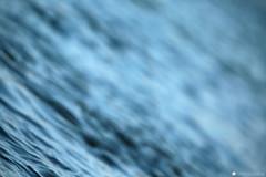 adige 3 (formicacreativa) Tags: river fiume verona adige granprix canoaclubverona 1garacircuitonazionalegrandprixd'italia