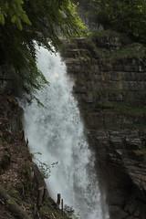 Giessbachflle ( Giessbachfall  - Wasserfall - Waterfall ) des Giessbach bei Giessbach am B.rienzersee im Berner Oberland im Kanton Bern der Schweiz (chrchr_75) Tags: chriguhurnibluemailch christoph hurni schweiz suisse switzerland svizzera suissa swiss chrchr chrchr75 chrigu chriguhurni mai 2015 hurni150531 kantonbern berner oberland berneroberland giessbachflle wasserfall waterfall giessbach bach creek wasser water eau albumwasserflleimkantonbern albumwasserfllewaterfallsderschweiz   vandfald cascade  cascada waterval wodospad vattenfall vodopd slap
