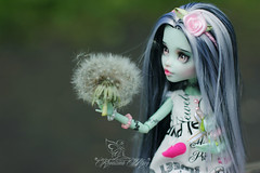 Dolls906 (Emerald_Fairy) Tags: monster high doll ooak frankie repaint