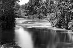 River, 30sec, ii (esteveb) Tags: bw river landscape long exposure bin nd riu paisatge exposició llarga d7000