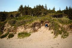 Seeking Shelter (Poul-Werner) Tags: sunset beach strand denmark zealand dk danmark sommerferie summervacation solnedgang tisvildeleje sjlland summerbreak capitalregionofdenmark tisvildestrand