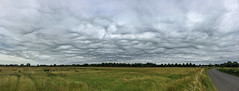 Undulatus Asperatus (mikeboss) Tags: weather clouds skies undulatus cloudage asperatus