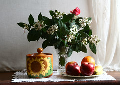 Laurel tino (leograttoni) Tags: flowers winter stilllife flores frutas fruits buenosaires interior pot bodegn invierno ramo cermica pote naturemorte laplata naturalezamuerta laureltino