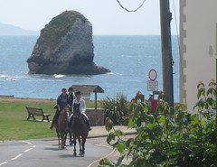 Riding at the bay (cohodas208c) Tags: horses shore isleofwight englishchannel freshwaterbay