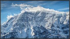 Mount Kitchener - North East Face (Maclobster) Tags: face rockies mt north kitchener canadian mount spindrift