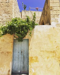 l o v e l i n e s s  #travel #explore #roam #colour #summerdays #malta #gozo #dailylife (Julesy Mac) Tags: travel explore roam colour summerdays malta gozo dailylife