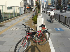 P1130583 (Stop carbon pollution) Tags: japan 日本 honshuu 本州 kantou 関東 toukyou tokyo 東京