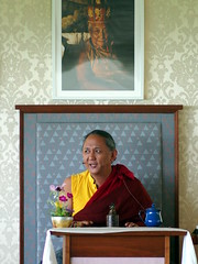 Dzigar Kongtrul Rinpoche teaching in Bohatch Ireland, Clare (Olivier Rich) Tags: dzigar kongtrul rinpoche bohatch mangala shri bhuti