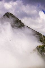 The Hawk (emanuelezallocco) Tags: sibillini mountains national park ilikemarche ilikeitaly marche region italy europe travel sky clouds fog high colors nature landscape summer 2016 rock fields natura hawk falco panorama alto cima berro tre vescovi priora rifugio fargno discesa scelta decidere cielo nuvole meraviglia beauty beautiful