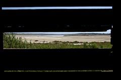 IMG_0511 (Roberto Audenino) Tags: sicilia sicily vendicari riservanaturalevendicari landscapes