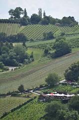sDSC_0077 (L.Karnas) Tags: wien vienna wiede    viena vienne sommer summer 2016 leopoldsberg aussichtspunkt nasenweg panorama