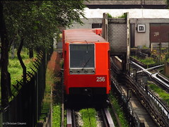 C.N.C.F. NM-79 M.0256   Indios Verdes L-3 (Christian Linarez) Tags: cdmx nm79 stcmetro stc subway subterrneo concarril cncf linea3 indiosverdes metroindiosverdes metrodf