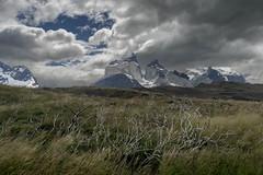 Serie Patagonia (Max Besser Jirkal) Tags: chile patagonia torresdelpaine paisajes