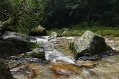 DSC01907 (rad!x) Tags: cascadaelsalto cuetzalan cuetzalandelprogreso mexico puebla pueblomagico waterfall everyone vacation