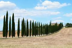 Iconic place (silviamancini) Tags: tuscany tuscanycious toscana valdorcia