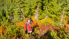 CAN_3132 (alexandre.thissen) Tags: coquihalla hiking illalmeadows nath