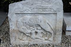 Reprsentation de la Louve capitoline avec les jumeaux Romulus et Rmus (kingfisher001) Tags: romulus dalle capitoline jumeaux louve rmus